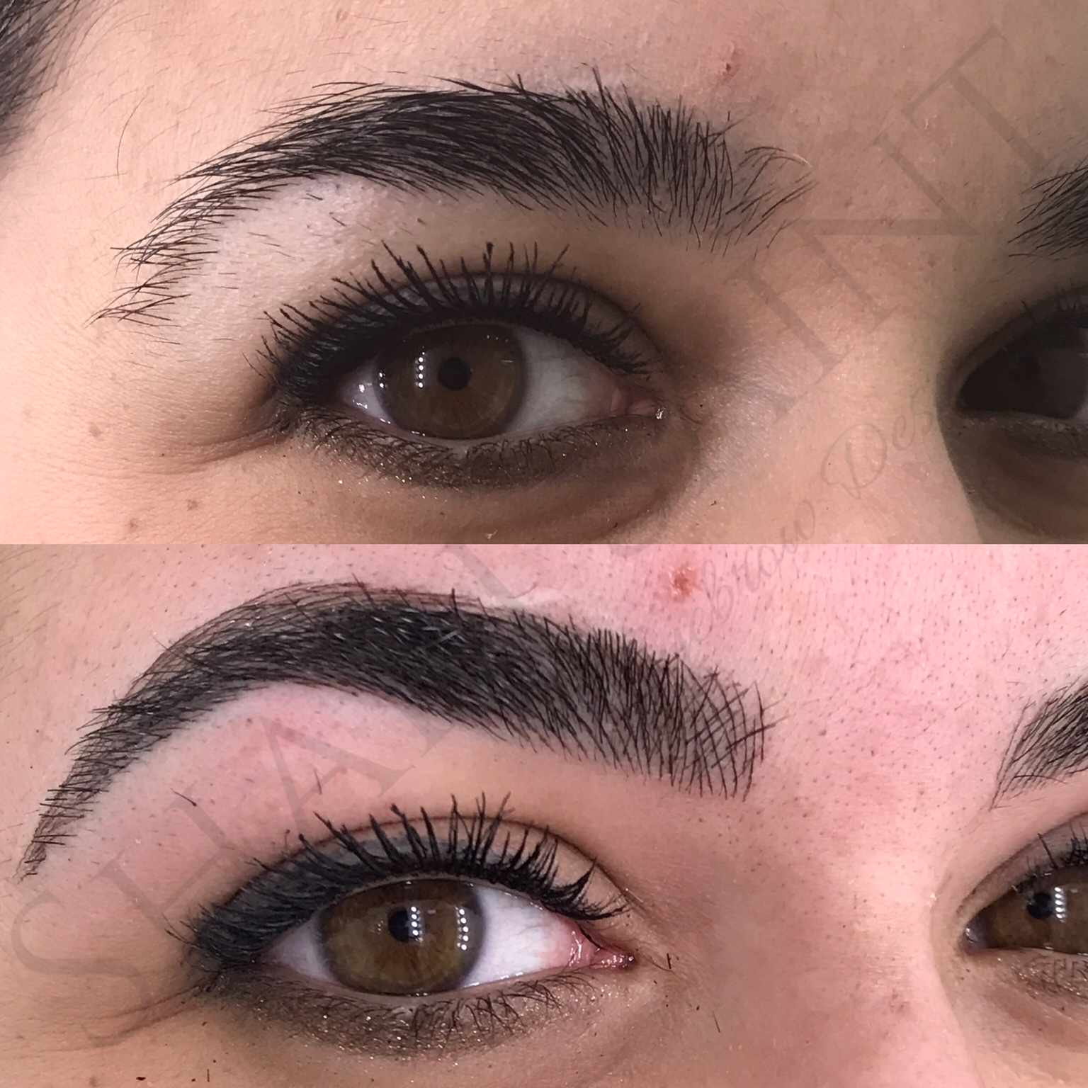 Creating an arch on thick brows