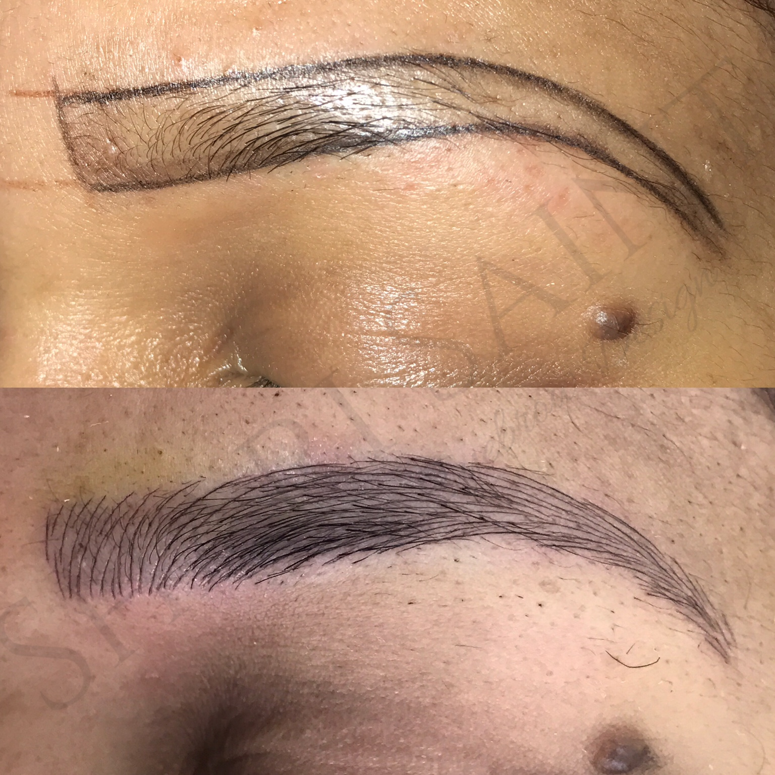 What Is Microblading Long Islands Premier Eyebrow Designer